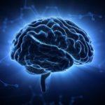 学習能力を爆上げさせる脳をフル活用した効率的勉強法 201107