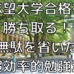 【大学入試】志望大学合格を勝ち取る!無駄を省いた超効率的勉強法のコツ15選!